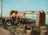 Luxor, a Sakieah (Water Wheel) for the Irrigation of Lands