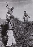 Farm workers in Nazi Germany