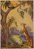 Aesop's Fables: The Cock and the Fox
