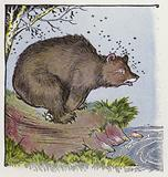 Aesop's Fables: The Bear and the Bees