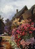 Phloxes and Tall Standards of Dorothy Perkins Rose at Ann Hathaway's Cottage, Stratford-on-Avon