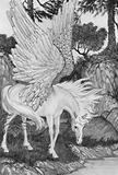 Pegasus had been seen near the Fountain of Pirene