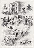 The Kennel Club Field Dog Trials at Blandford