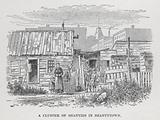 A Cluster of Shanties in Shantytown