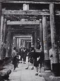 An approach to the Shinto Temple of Inari