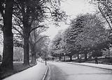 Bath: The Avenue, Victoria Park