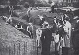Trenches being dug in a London park as the threat of war increased during the crisis over Czechoslovakia in September …