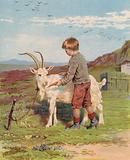 Young boy feeding a carrot to a billy goat on a farm