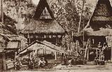 Native houses in Sumatra, Indonesia