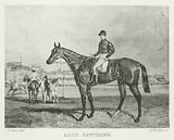 Alice Hawthorn, foaled 1838