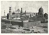 Cairo, from the tombs of the Memluks