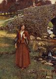 The Bailiff's daughter of Islington