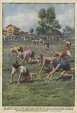 Una originale corsa di levrieri umani e stata organizzata fra i soci e le socie di un circolo …