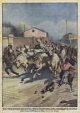 Mentre venivano scaricati dai vagoni ferroviari, a Napoli, 24 buoi sono riusciti a fuggire …
