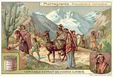 Mapuche nomads