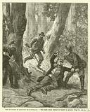 Les Batteurs De Buissons En Australie