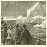 Sur Un Iceberg