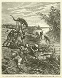 Les Plaisirs Dans L'Inde, Une chasse aux alligators