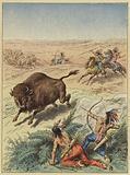 Indiens des prairies chassant le bison