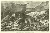"""Captain Gardiner's body was lying beside the boat"""