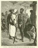 Les Bambaras