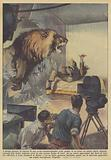 A Roma, durante la ripresa di una scena cinematografica nella gabbia di un leone, un attore stava …