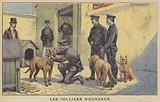 Police dogs being awarded collars of honour