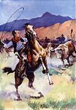 Lariat versus Steer