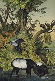Animals of Malacca and Sumatra