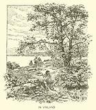 In Vinland