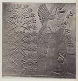 A Bas-relief of Asshur-izir-pal