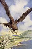 A Giant Bird Called a Roc