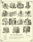 Bee Hives and Houses