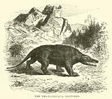 The Megalosaurus, restored