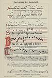 The evolution of musical notation