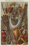 Cultural artefacts of Oceania and Australasia