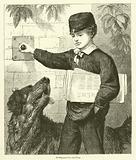 Newspaper-boy and Dog