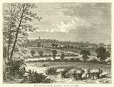 The Roman Road, Tufnell Park, in 1838