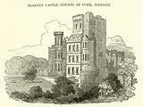 Blarney Castle, County of Cork, Ireland