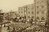 Barrels of molasses at West India Docks