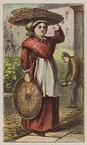 Basket Woman