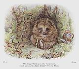 Mrs Tiggy-Winkle posed for this portrait, which appeared in Appley Dapply's Nursery Rhymes