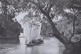 Paddy Boat in Full Sail