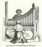 An organ of the fourteenth century