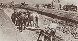Preparation of the foundations for the new Australian capital city of Canberra, 1920