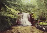 Tasmania: Silver Falls