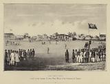 Cricketing