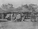 Australia: Loading Camels, on an Australian Station