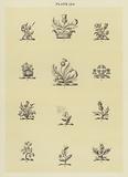 Llustration for Fairbairn's Book of Crests