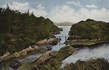 Southern Ireland: Parknasilla, County Kerry